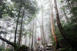 Henkilö metsässä.
